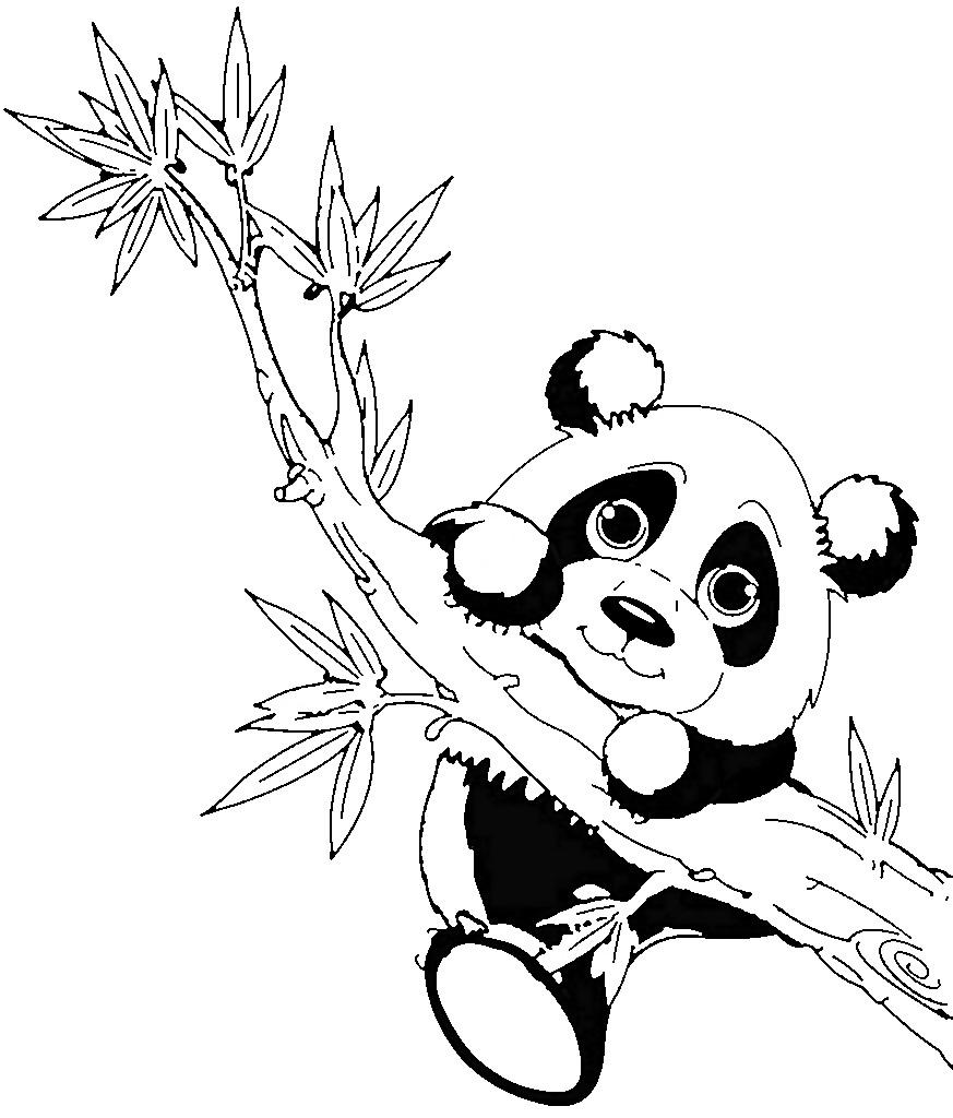 panda bär ausmalbilder zum ausdrucken - super malvorlagen