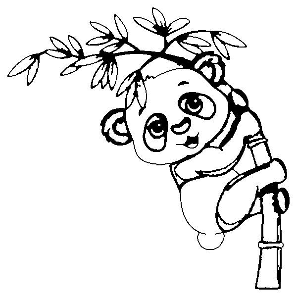 panda bär ausmalbilder zum ausdrucken  super malvorlagen
