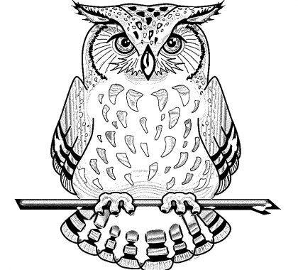 Baykuş Boyama Sayfası Yetişkin